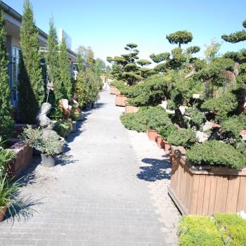 Fotos Gartenpark (26)